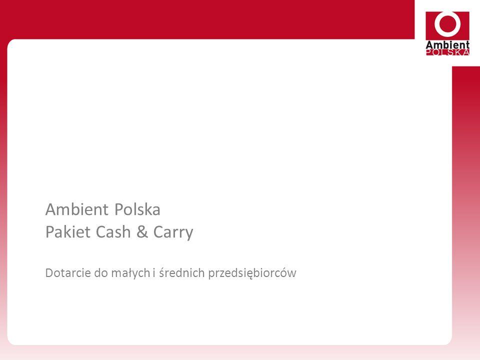 Ambient Polska Pakiet Cash & Carry Dotarcie do małych i średnich przedsiębiorców
