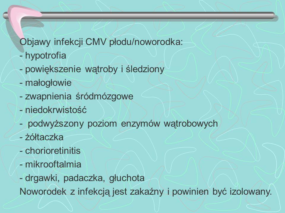 Objawy infekcji CMV płodu/noworodka: - hypotrofia - powiększenie wątroby i śledziony - małogłowie - zwapnienia śródmózgowe - niedokrwistość - podwyższ