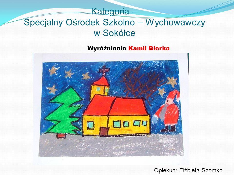 Kategoria – Specjalny Ośrodek Szkolno – Wychowawczy w Sokółce Wyróżnienie Kamil Bierko Opiekun: Elżbieta Szomko