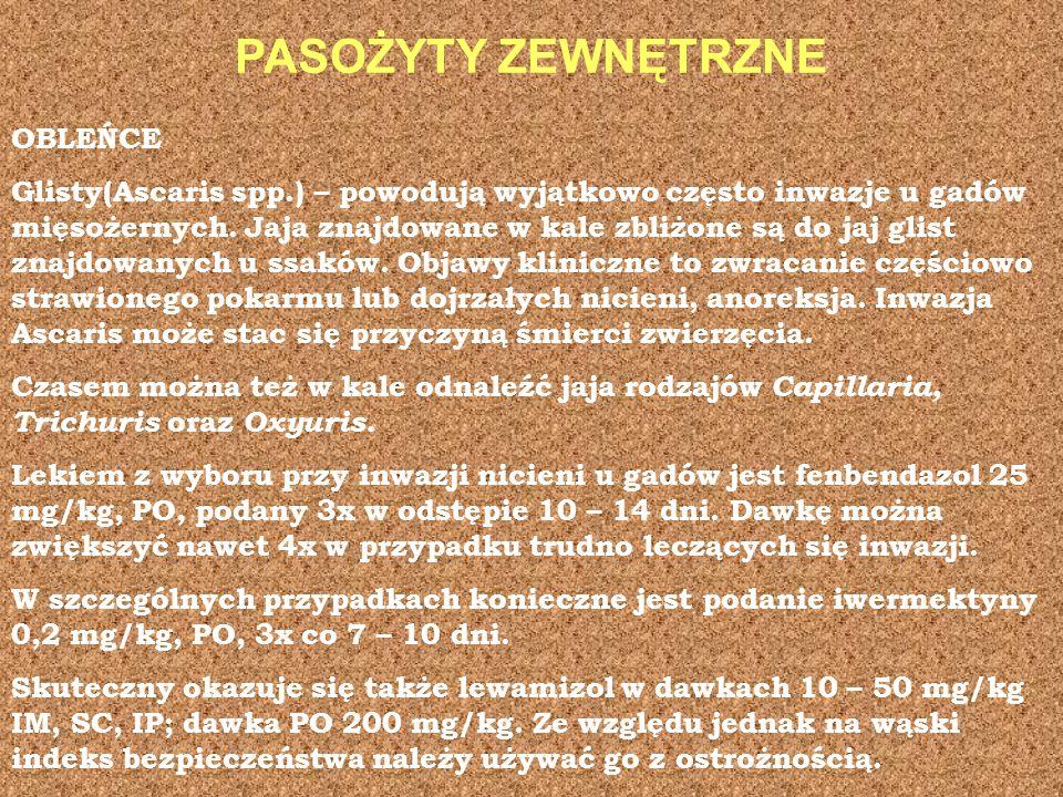 PASOŻYTY ZEWNĘTRZNE OBLEŃCE Glisty(Ascaris spp.) – powodują wyjątkowo często inwazje u gadów mięsożernych. Jaja znajdowane w kale zbliżone są do jaj g