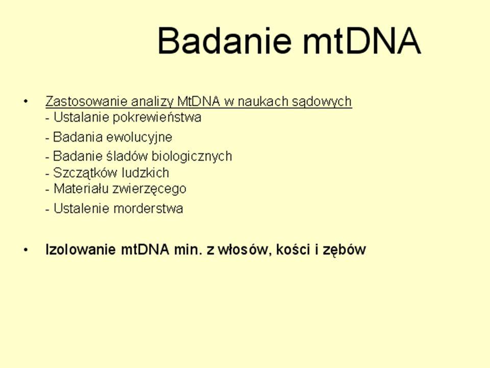 Sporadyczne delecje mtDNA w oocycie Nature Genetics, 2008
