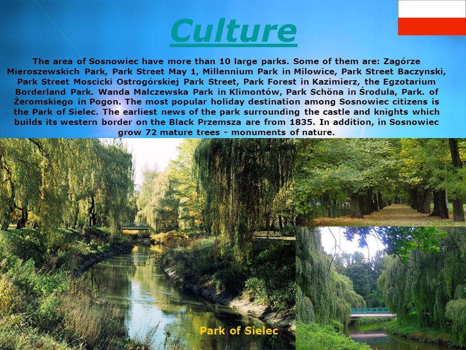 Culture The area of Sosnowiec have more than 10 large parks. Some of them are: Zagórze Mieroszewskich Park, Park Street May 1, Millennium Park in Milo