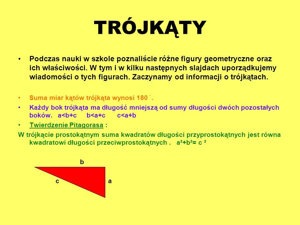 TRÓJKĄTY Podczas nauki w szkole poznaliście różne figury geometryczne oraz ich właściwości. W tym i w kilku następnych slajdach uporządkujemy wiadomoś
