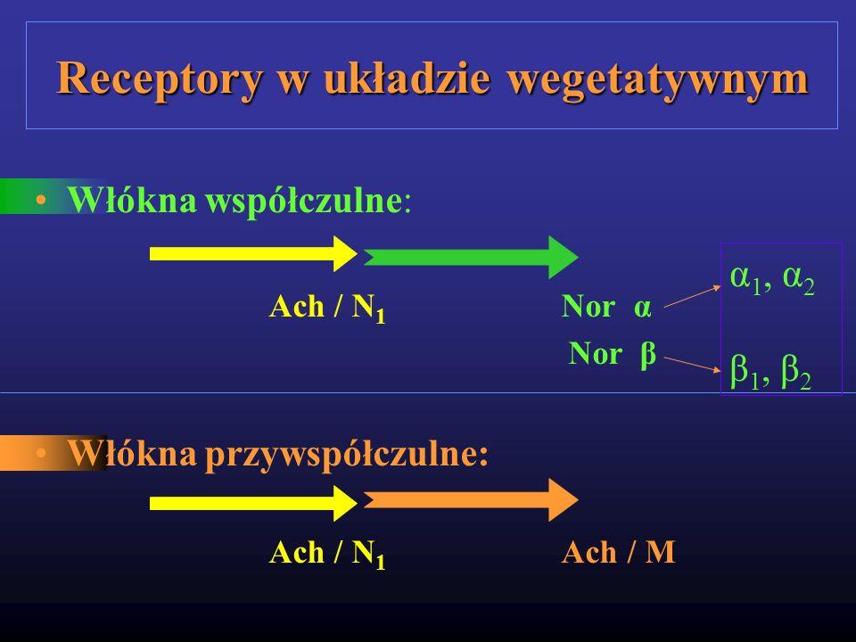 Receptory w układzie wegetatywnym Włókna współczulne: Ach / N 1 Nor α Nor β Włókna przywspółczulne: Ach / N 1 Ach / M α 1, α 2 β 1, β 2