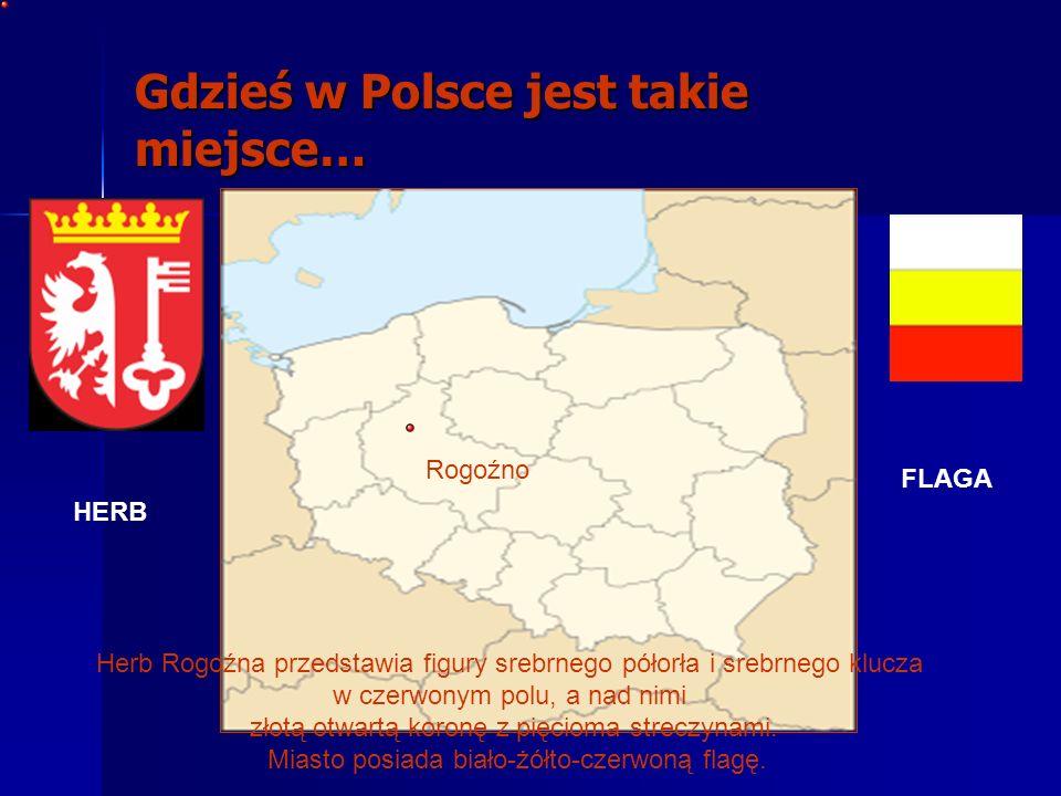 Położenie Rogoźno położone jest nad rzekami Wełną i Małą Wełna Nad Jeziorem Rogozińskim (ok.