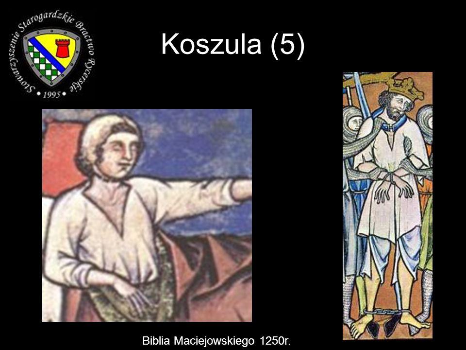 Biblia Maciejowskiego 1250r. Koszula (5)