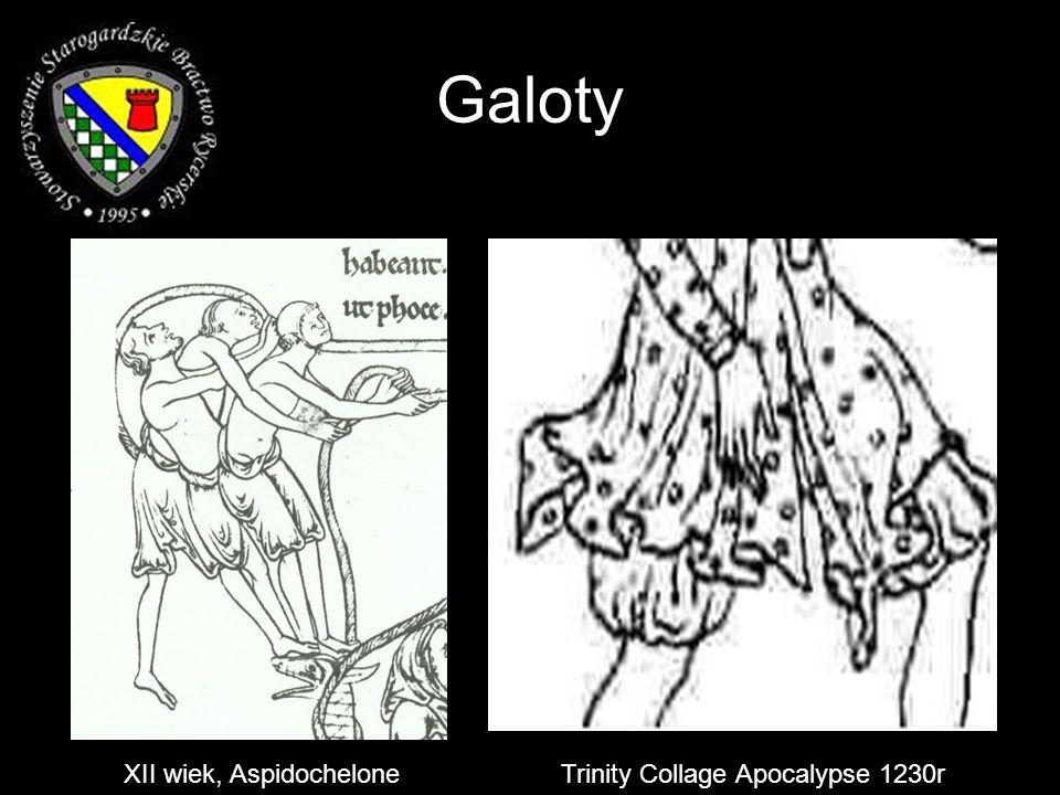 Galoty XII wiek, AspidocheloneTrinity Collage Apocalypse 1230r