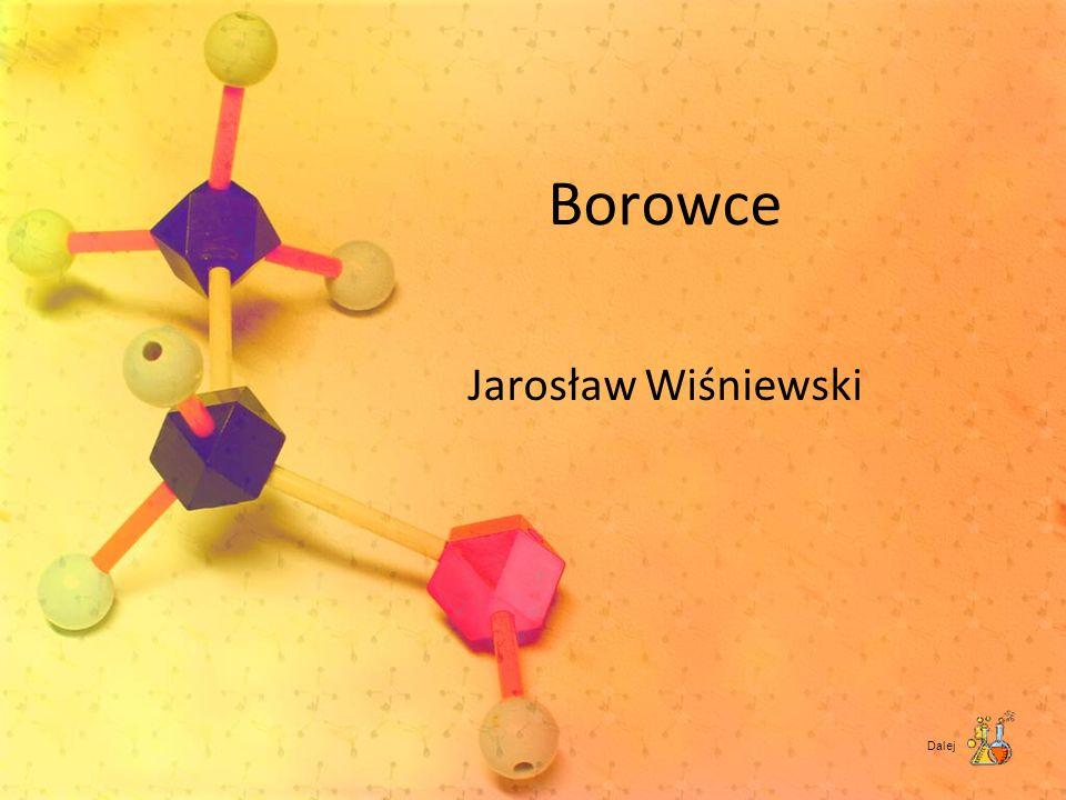 Borowce Jarosław Wiśniewski Dalej