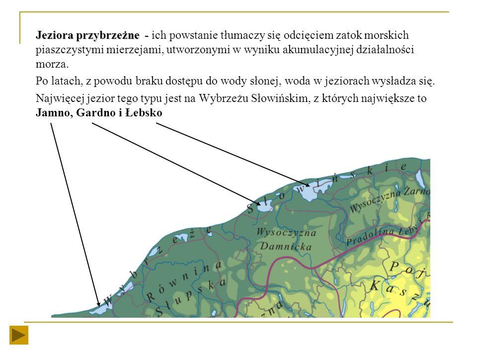 Formy terenu charakterystyczne dla wybrzeża niskiego to: Mierzeja Mierzeja - przedłużenie zasadniczego lądu stałego, lub jego półwyspu, usypane przez