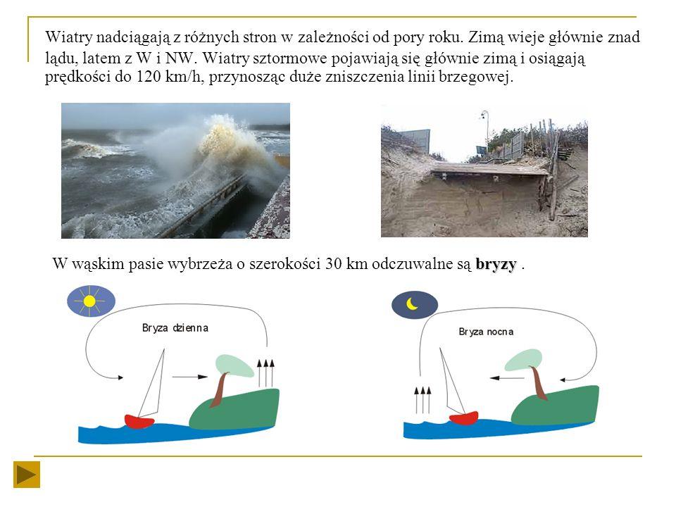 Wysunięcie linii brzegowej w morze, sprzyja wzrostowi sumy opadów, w miarę przemieszczania się z SW na NE. Średnie roczne sumy opadów wahają się od ok