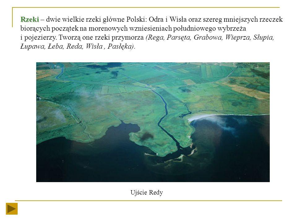 Wody powierzchniowe Bałtyk Bałtyk - jest morzem młodym (zaczął się tworzyć około 10 000 lat temu). Jest to morze płytkie, śródlądowe o małym zasoleniu