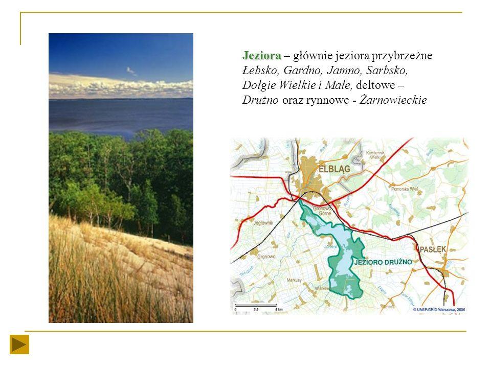 Rzeki Rzeki – dwie wielkie rzeki główne Polski: Odra i Wisła oraz szereg mniejszych rzeczek biorących początek na morenowych wzniesieniach południoweg
