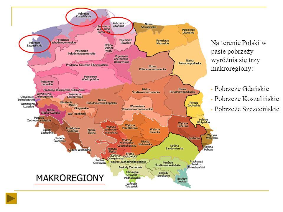 Pas pobrzeży, zgodnie z podziałem fizycznogeograficznym Polski (wg. J. Kondrackiego), należy do Regionu Pobrzeży Południowobałtyckich. To szeroki na k