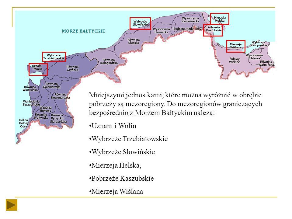 Na terenie Polski w pasie pobrzeży wyróżnia się trzy makroregiony: Pobrzeże Gdańskie Pobrzeże Koszalińskie Pobrzeże Szczecińskie