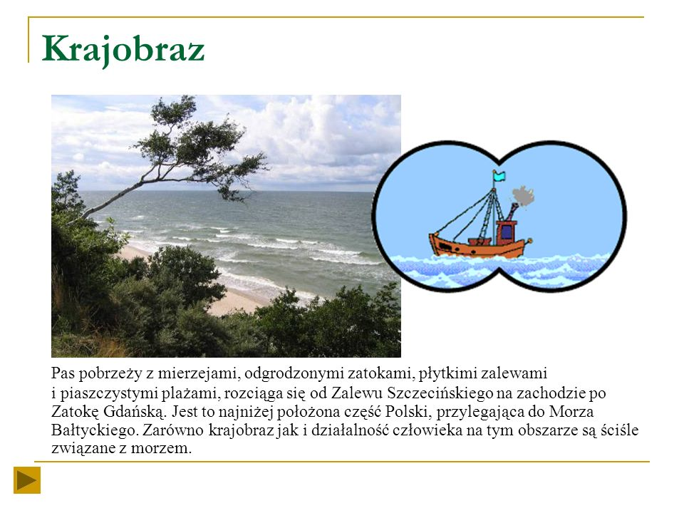 Mniejszymi jednostkami, które można wyróżnić w obrębie pobrzeży są mezoregiony. Do mezoregionów graniczących bezpośrednio z Morzem Bałtyckim należą: U