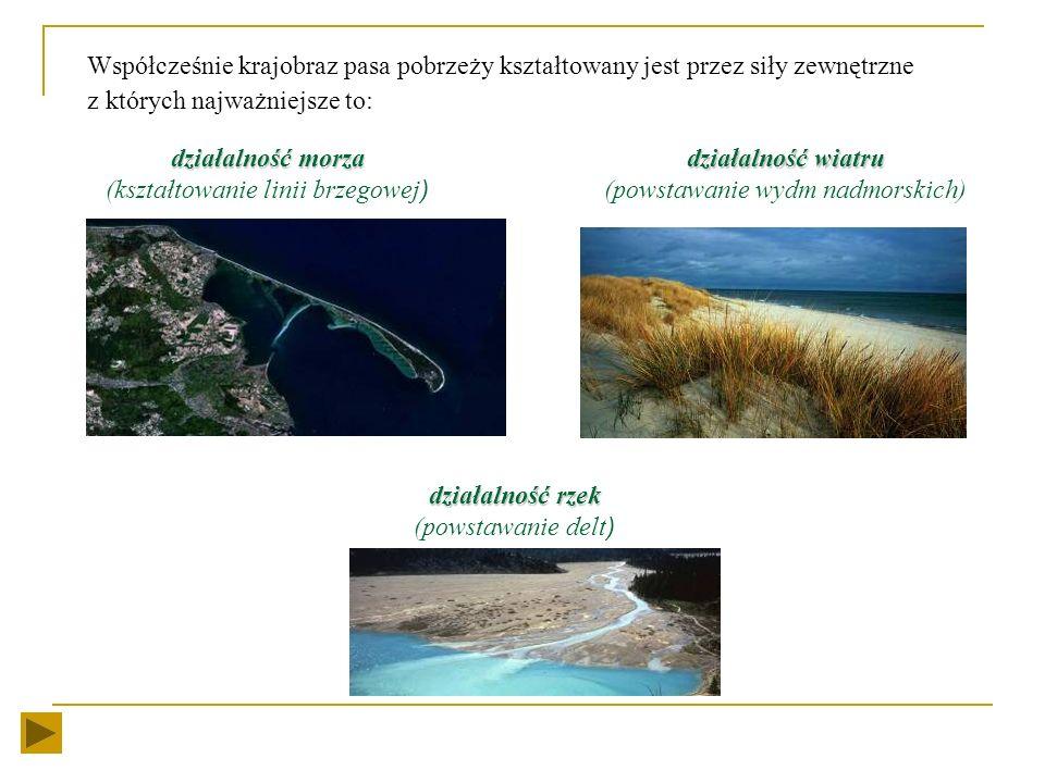 W przeszłości obszar pobrzeży podlegał wielokrotnym zlodowaceniom. Pozostałością tego okresu są pokłady gliny zwałowej tworzącej morenę denną, oraz pa