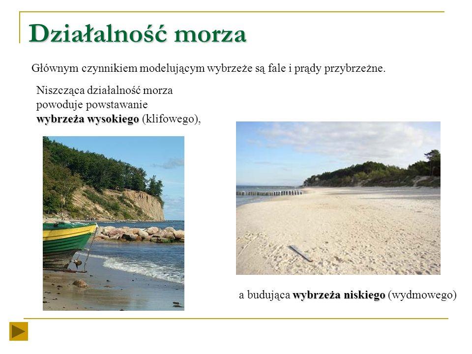 Współcześnie krajobraz pasa pobrzeży kształtowany jest przez siły zewnętrzne z których najważniejsze to: działalność morza działalność morza (kształto