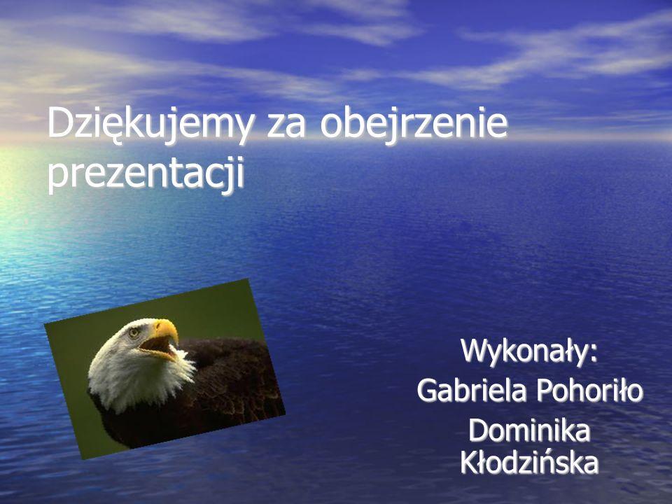 Dziękujemy za obejrzenie prezentacji Wykonały: Gabriela Pohoriło Dominika Kłodzińska