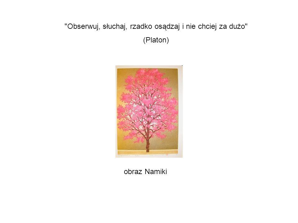 obraz Namiki