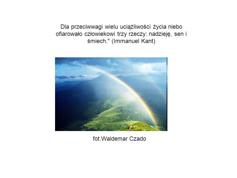 Żaden człowiek nie jest samoistną wyspą; każdy stanowi ułomek kontynentu, część lądu.