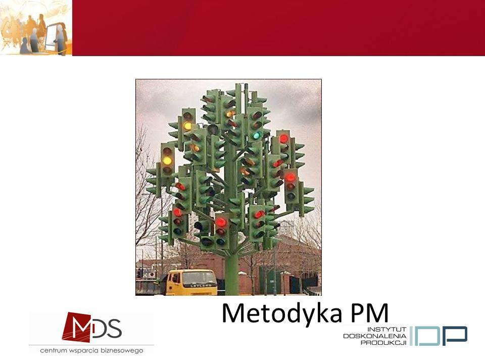 Tekst Metodyka PM