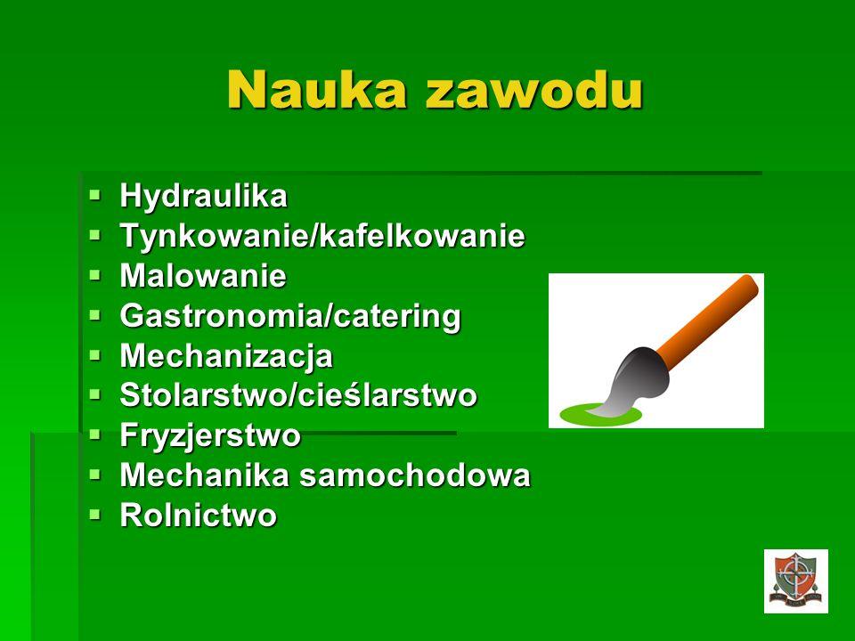 Nauka zawodu Hydraulika Hydraulika Tynkowanie/kafelkowanie Tynkowanie/kafelkowanie Malowanie Malowanie Gastronomia/catering Gastronomia/catering Mecha
