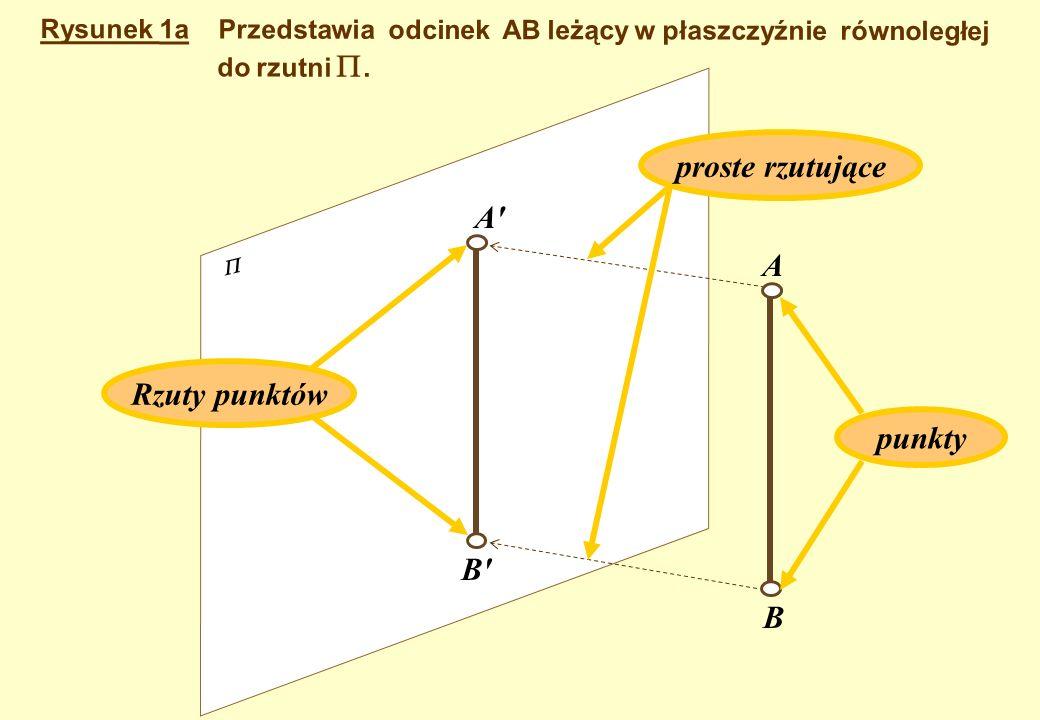 Odcinek AB i wszystkie figury leżą w płaszczyznach równoległych do rzutni. Rysunek 1 A' B' A B F E D C F E D C S S' L L' K' M' M K