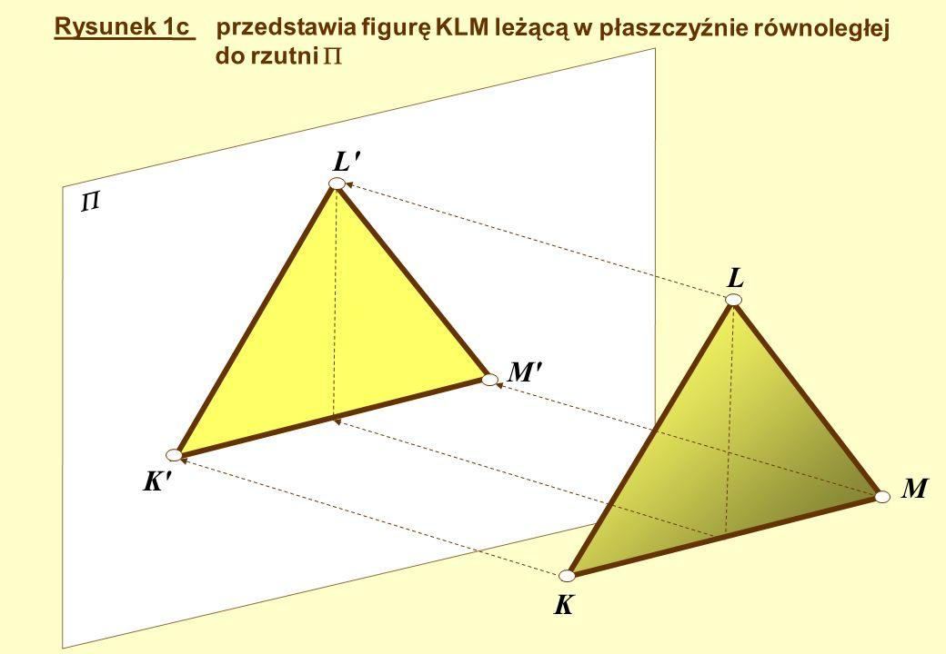Rysunek 1b Przedstawia figurę CDEF leżącą w płaszczyźnie równoległej do rzutni. F E D C F E D C proste rzutujące