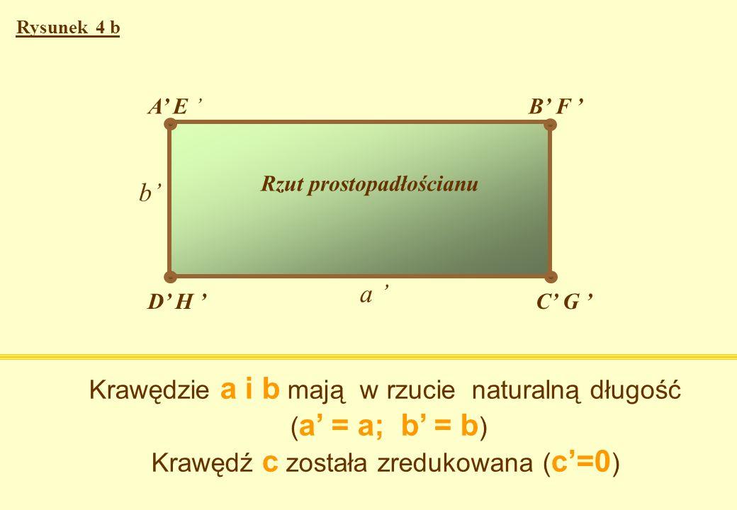 a c b AB C E F D H G A E B F D H C G b Prostopadłościan Rysunek 4a Rzut prostopadłościanu a