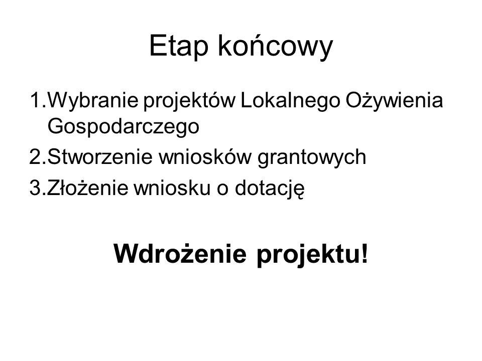 Etap końcowy 1.Wybranie projektów Lokalnego Ożywienia Gospodarczego 2.Stworzenie wniosków grantowych 3.Złożenie wniosku o dotację Wdrożenie projektu!