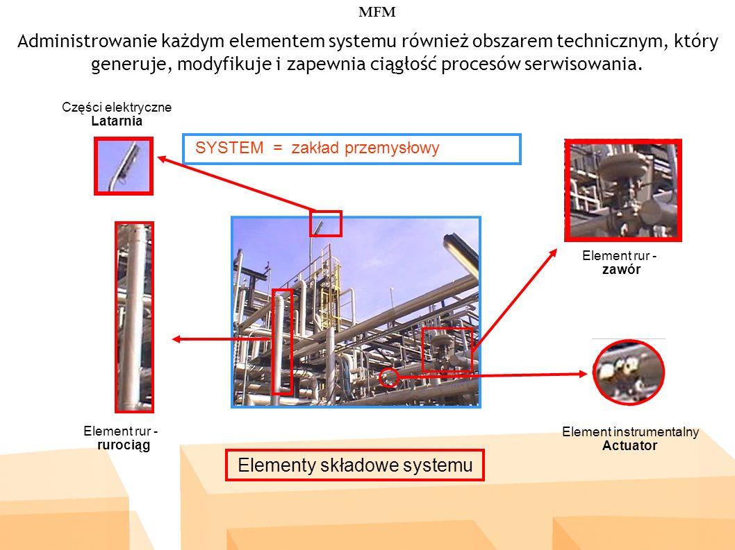 SYSTEM = zakład przemysłowy Administrowanie każdym elementem systemu również obszarem technicznym, który generuje, modyfikuje i zapewnia ciągłość procesów serwisowania.