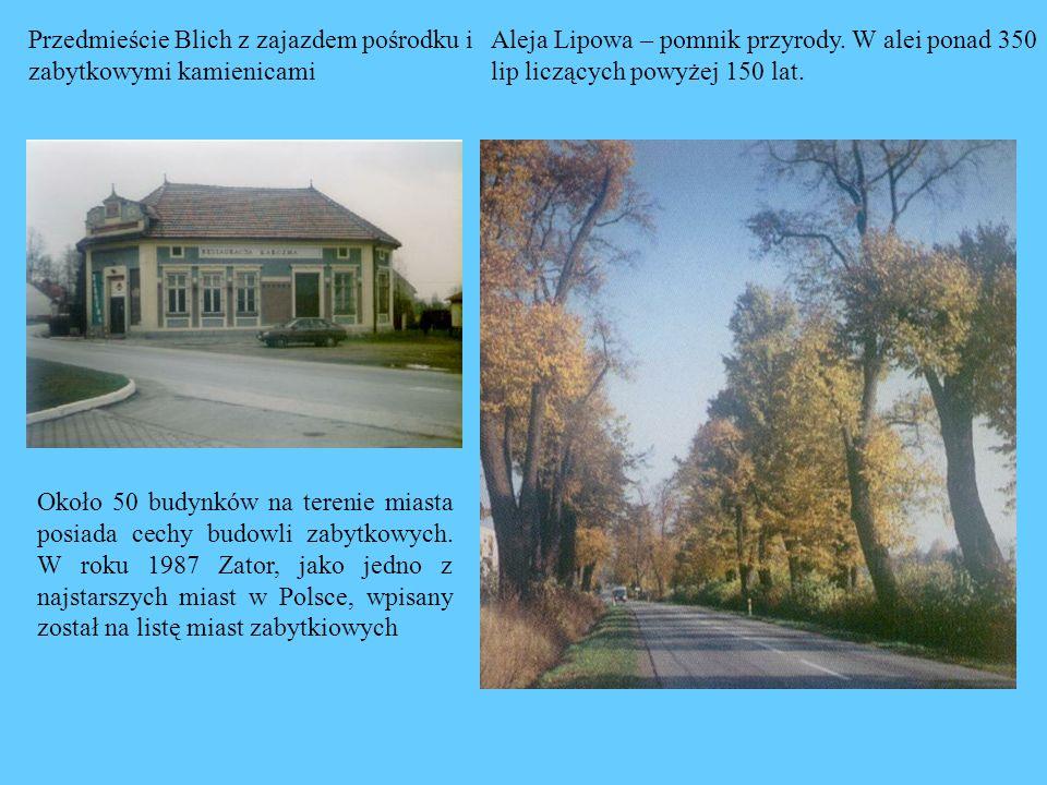 Przedmieście Blich z zajazdem pośrodku i zabytkowymi kamienicami Aleja Lipowa – pomnik przyrody. W alei ponad 350 lip liczących powyżej 150 lat. Około