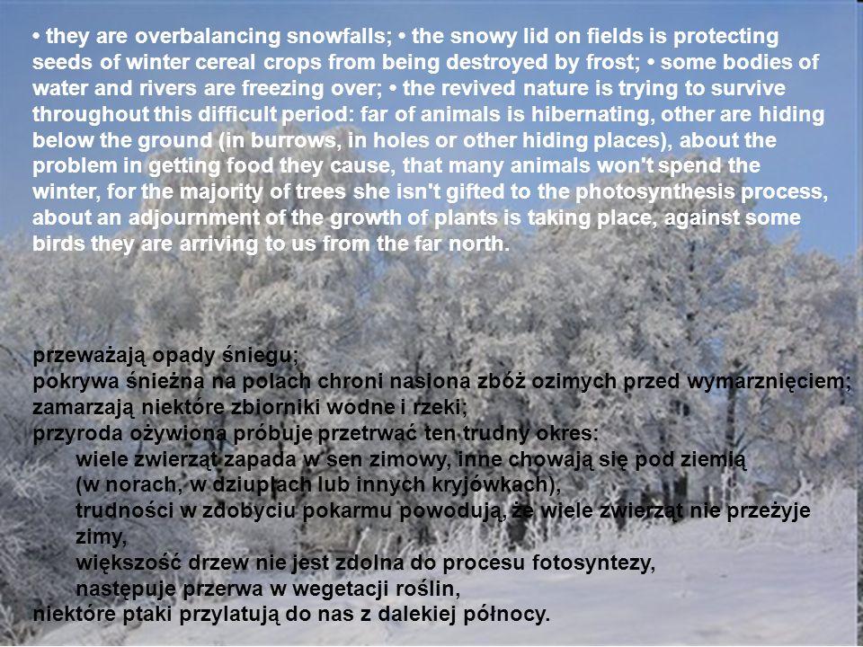 przeważają opady śniegu; pokrywa śnieżna na polach chroni nasiona zbóż ozimych przed wymarznięciem; zamarzają niektóre zbiorniki wodne i rzeki; przyro