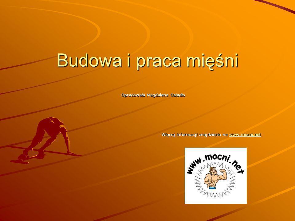 Budowa i praca mięśni Opracowała Magdalena Osiadło Więcej informacji znajdziecie na www.mocni.net www.mocni.net