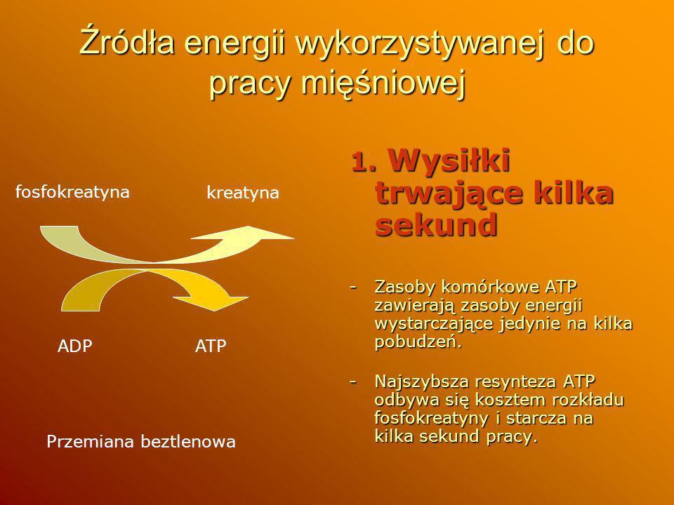 Źródła energii wykorzystywanej do pracy mięśniowej 1. Wysiłki trwające kilka sekund -Zasoby komórkowe ATP zawierają zasoby energii wystarczające jedyn