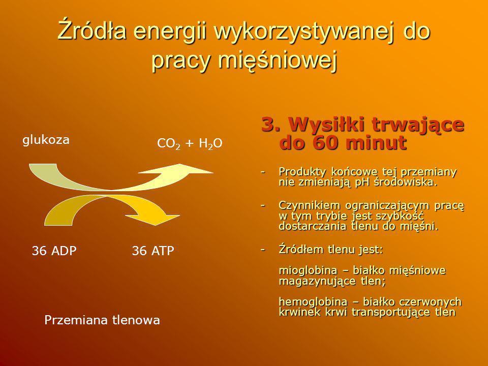 Źródła energii wykorzystywanej do pracy mięśniowej 3. Wysiłki trwające do 60 minut -Produkty końcowe tej przemiany nie zmieniają pH środowiska. -Czynn