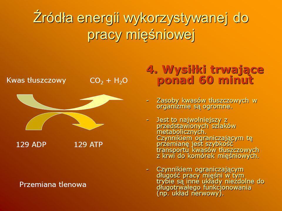 Źródła energii wykorzystywanej do pracy mięśniowej 4. Wysiłki trwające ponad 60 minut -Zasoby kwasów tłuszczowych w organizmie są ogromne. -Jest to na