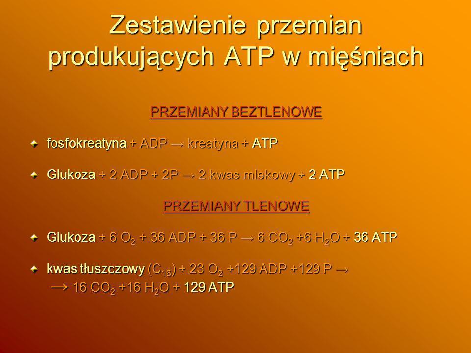 Zestawienie przemian produkujących ATP w mięśniach PRZEMIANY BEZTLENOWE fosfokreatyna + ADP kreatyna + ATP Glukoza + 2 ADP + 2P 2 kwas mlekowy + 2 ATP