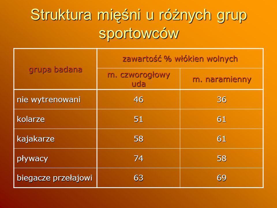 Struktura mięśni u różnych grup sportowców grupa badana zawartość % włókien wolnych m. czworogłowy uda m. naramienny nie wytrenowani 4636 kolarze5161