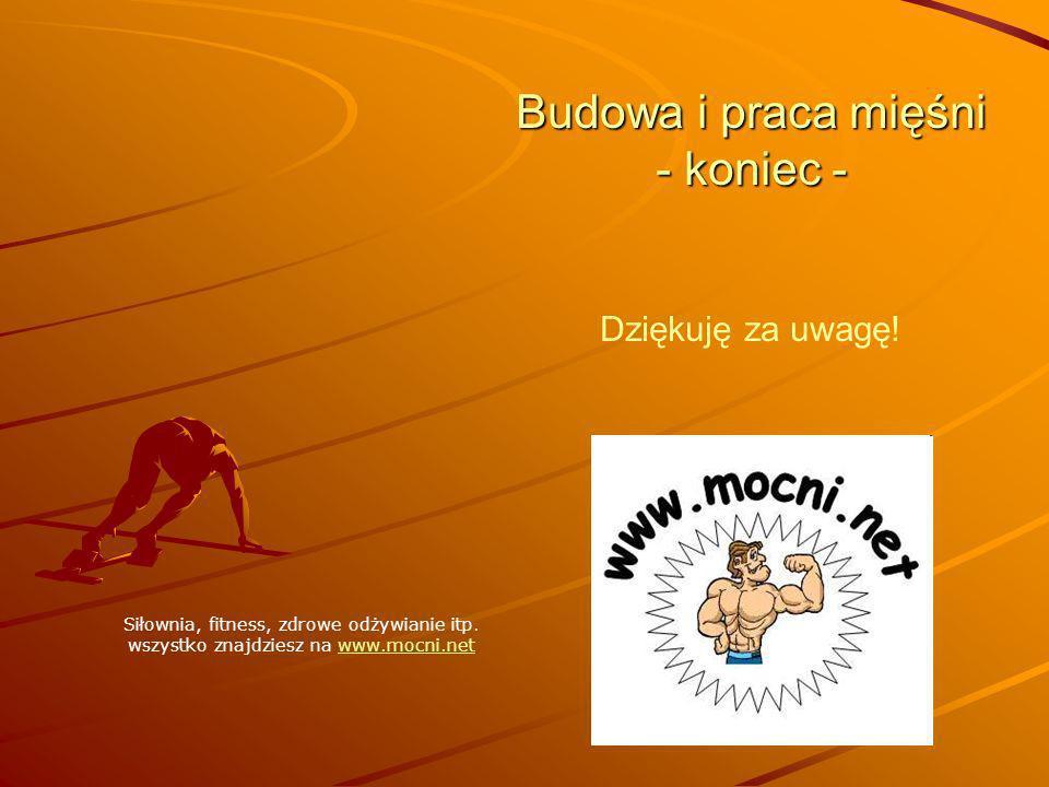 Budowa i praca mięśni - koniec - Dziękuję za uwagę! Siłownia, fitness, zdrowe odżywianie itp. wszystko znajdziesz na www.mocni.netwww.mocni.net