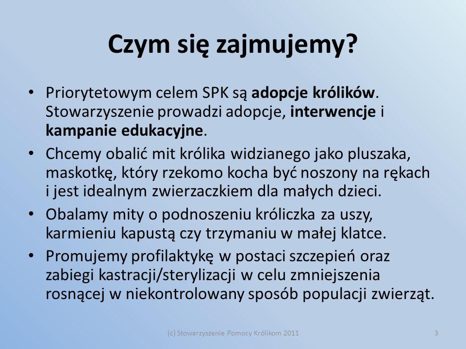 Czym się zajmujemy? Priorytetowym celem SPK są adopcje królików. Stowarzyszenie prowadzi adopcje, interwencje i kampanie edukacyjne. Chcemy obalić mit