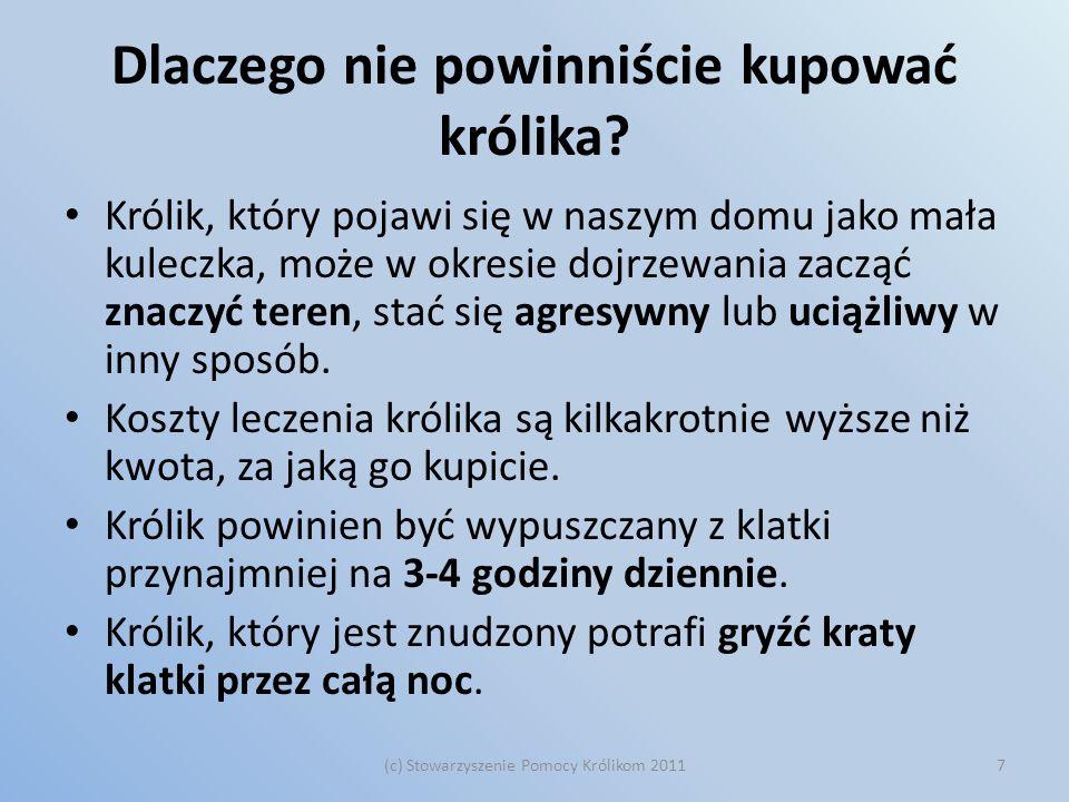 Króliki z Warszawy Wyrzucane na śmietnik, wypuszczane w ogródkach działkowych, wystawiane na klatkę schodową.