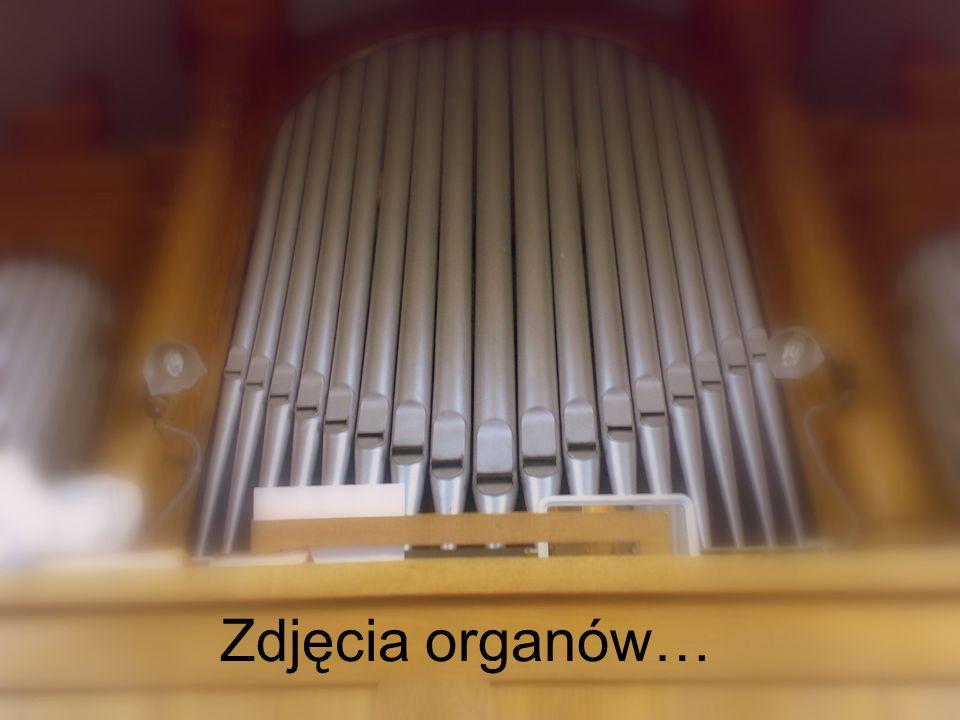 Zdjęcia organów…
