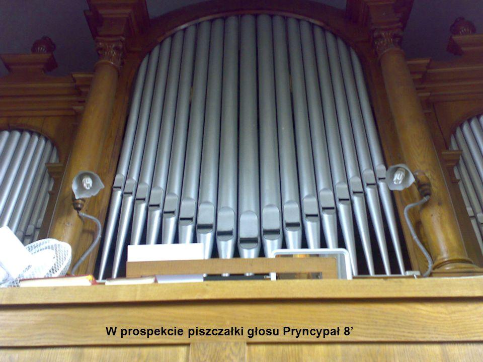 W prospekcie piszczałki głosu Pryncypał 8