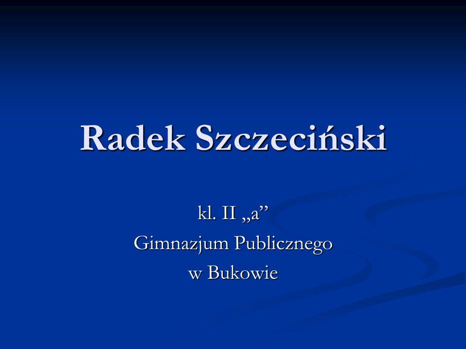 Radek Szczeciński kl. II a Gimnazjum Publicznego w Bukowie