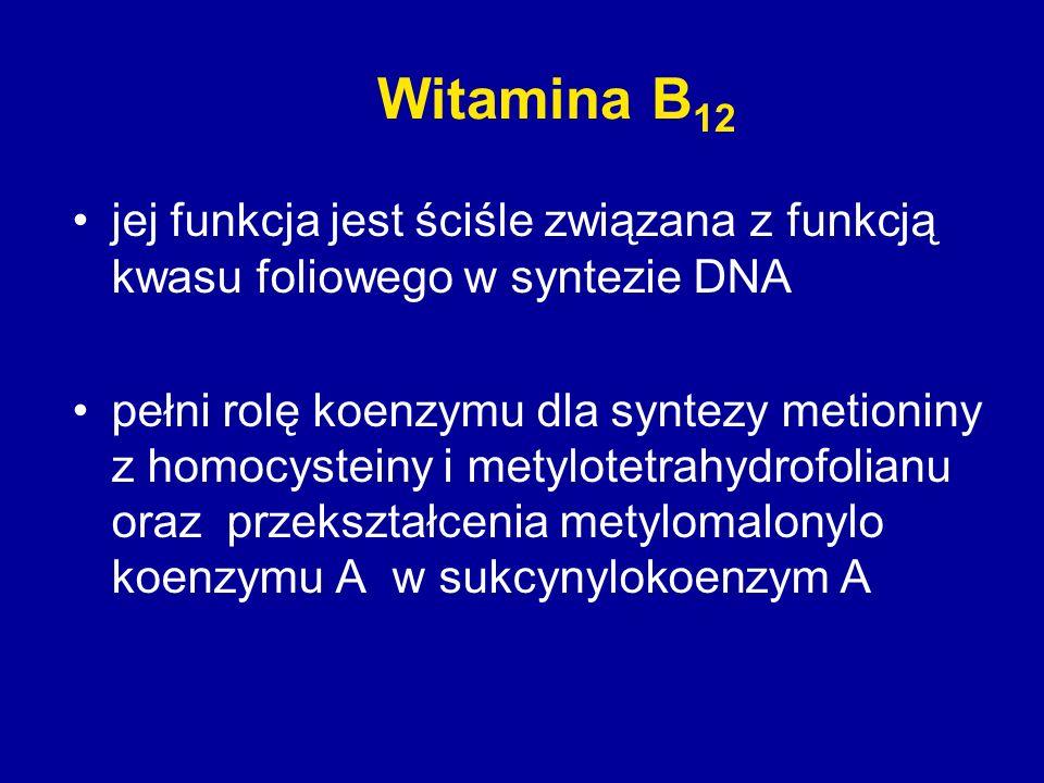 Witamina B 12 jej funkcja jest ściśle związana z funkcją kwasu foliowego w syntezie DNA pełni rolę koenzymu dla syntezy metioniny z homocysteiny i met