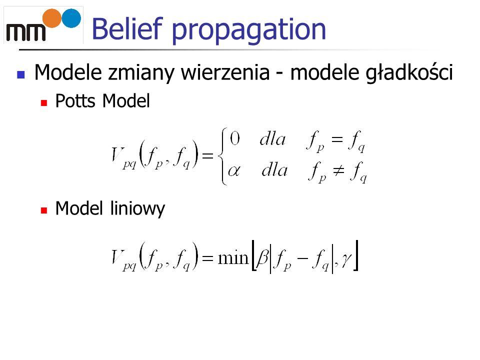 Modele zmiany wierzenia - modele gładkości Potts Model Model liniowy Belief propagation