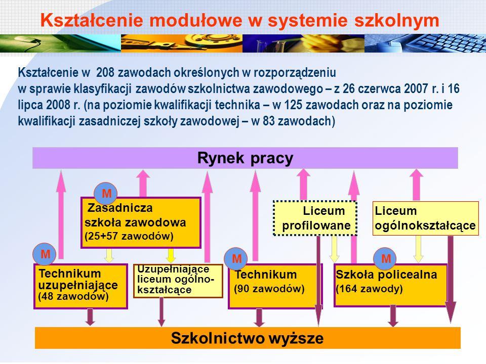 Kształcenie w 208 zawodach określonych w rozporządzeniu w sprawie klasyfikacji zawodów szkolnictwa zawodowego – z 26 czerwca 2007 r. i 16 lipca 2008 r
