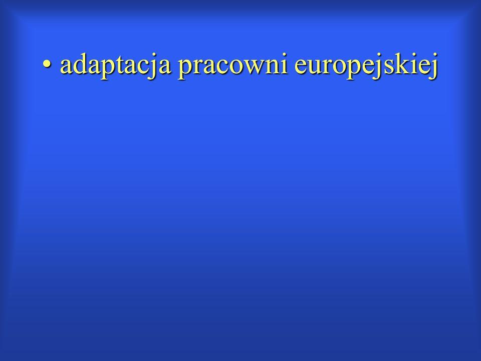 adaptacja pracowni europejskiej adaptacja pracowni europejskiej