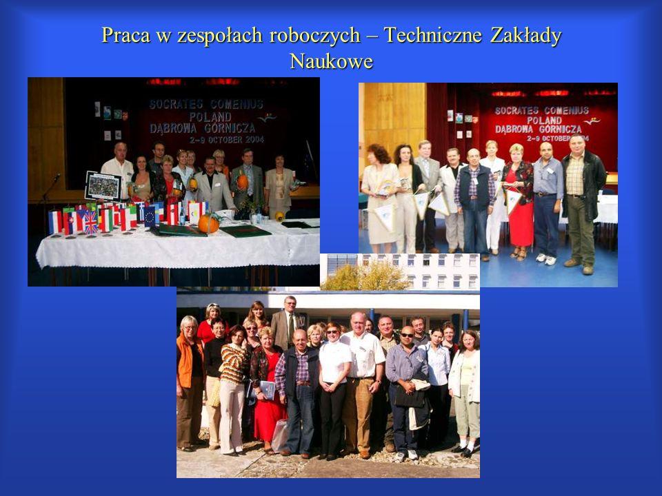 Praca w zespołach roboczych – Techniczne Zakłady Naukowe